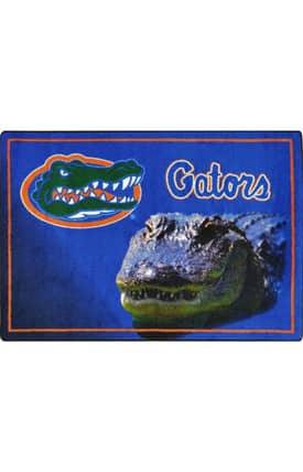 Joy Carpets Collegiate Mascot Florida Rug