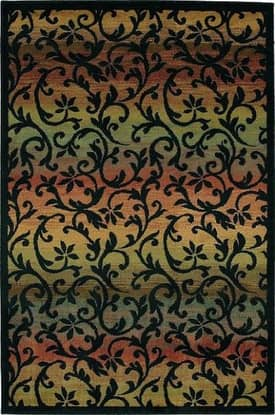 Shaw Accents Ornament Rug