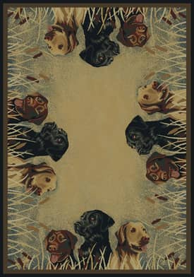 United Weavers Hautman Brothers Labs in Marsh Rug