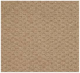 Capel Shoal Raffia Outdoor Rug