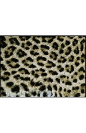 Concord Global National Geographic Photographic Ocelot Rug