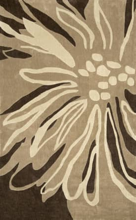 Rugs USA Radiante Floral Transition Rug