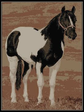 Rugs USA Serendipity Horse Rug