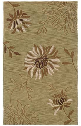 L.R. Resources Inc. Fashion LR20542 Rug