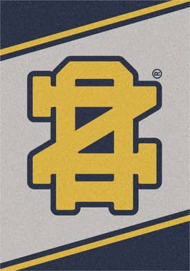 Milliken Team Spirit University Of Notre Dame Rug