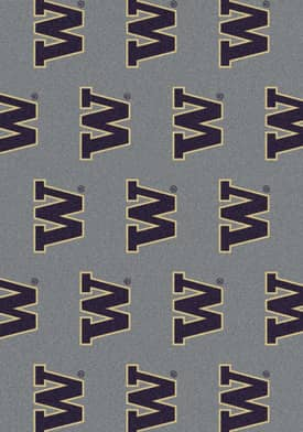 Milliken College Team Repeat Washington Huskies Rug