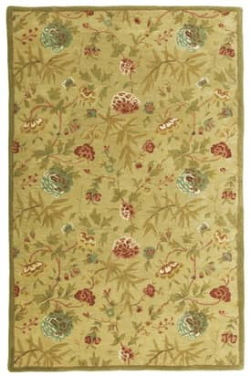 St. Croix Trading Traditions Transitional PT27 Rug